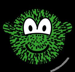 Cactus buddy icon