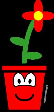 Bloempot buddy icon