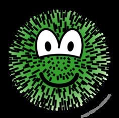 Cactus emoticon