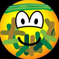 Gecamoufleerde emoticon