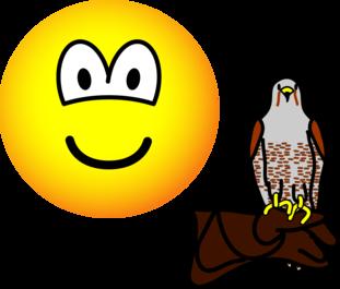 Valkenier emoticon