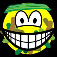 Gecamoufleerde smile
