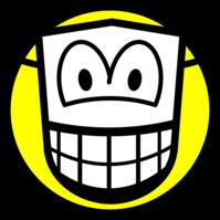 Gemaskerde smile